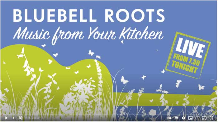 Bluebell Roots January 2021